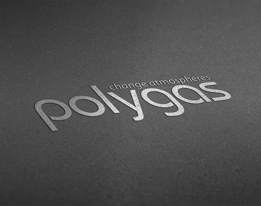 Realizzazione logo Polygas